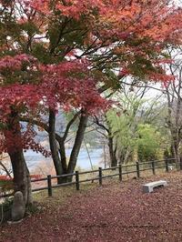 『わたらせ渓谷鉄道』と人気の国民宿舎で美味しいランチと紅葉を満喫♪ - neige+ 手作りのある暮らし