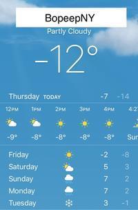 根雪になるかしら - NYからこんにちは