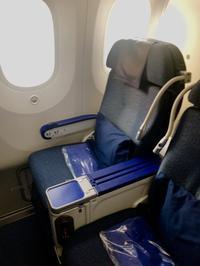 ANA PREMIUM ECONOMY UPGRADE - Travel Diary