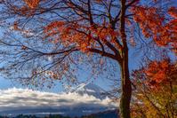 河口湖の紅葉2 - 風とこだま