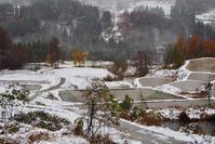 初雪の棚田 - 松之山の四季2