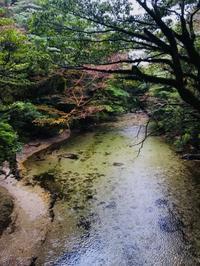 清流 - フォトサークル      「森羅の会」