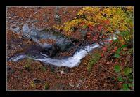 秋の渓流 - Desire