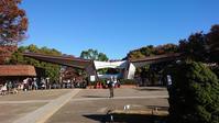 11/23五浦ハム ハム焼¥500 & しゅうまい弁当(セブンイレブン)@昭和記念公園ウォーキング大会 - 無駄遣いな日々