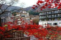 温泉地の秋 - 気ままに☆ひ撮り旅
