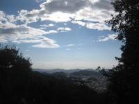 山を下って - 花図鑑