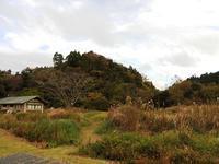 連休中日、曇り空 - 千葉県いすみ環境と文化のさとセンター
