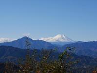 高尾山に紅葉を見に行ってきました - In bocca al lupo 2