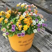 オレンジ色の寄せ植え - さにべるスタッフblog     -Sunny Day's Garden-