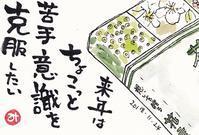 花を描く?? - きゅうママの絵手紙の小部屋
