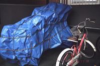 越冬自転車 - 照片画廊