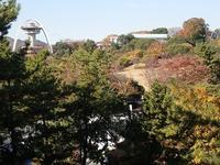 「秋の洋ラン展」講習会開催のお知らせ - 手柄山温室植物園ブログ 『山の上から花だより』