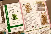 ハーブパック - 宮城県富谷市明石台  くさか動物病院ブログ