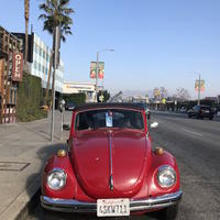 夢のカリフォルニアL.A.〜5日目 L.A.観光など - ちくちく すいすい 家派主婦のひとり言