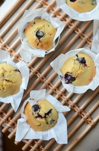 blueberry muffin - ういsnap