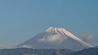 11月25日、我が家の駐車場から見た富士山と晩秋模様です。 - 楽しく元気に暮らします(心満たされる生活)