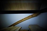 舟板錆びた輪釘 - SOLiD「無垢材セレクトカタログ」/ 材木店・製材所 新発田屋(シバタヤ)