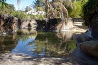 September 2018 Los Angeles Zoo 4 - 墨色の鳥籠