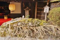 平野屋さんのお亀石 - たんぶーらんの戯言