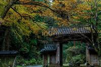 色濃い多武峰 - toshi の ならはまほろば