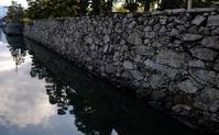 石垣 - ブナの写真日記