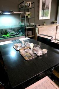 捏ね台 - KuriSalo 天然酵母ちいさなパン教室と日々の暮らしの事