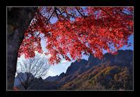 妙義山を望む - Desire