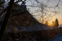 永観堂・南禅寺・高台寺の紅葉 ① - 写真の散歩道