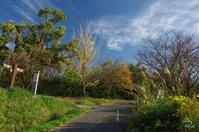天理市山之辺の道 - ぶらり記録:2 奈良・大阪・・・