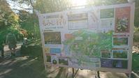 東山動植物園 紅葉ライトアップ2018 ~園内編~ - 愛知・名古屋を中心に活動する女性ギタリストせきともこのブログ