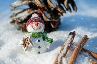 キンチョーの冬 日本の冬 - もるもってぃ家の中学受験ぶろぐin東海地方