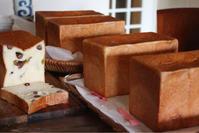 豆パンとハイジの白パン - 横浜パン教室tocotoco〜ワンランク上のパン作り〜