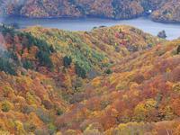 裏磐梯レイクラインの絶景紅葉 - 光の音色を聞きながら Ⅳ