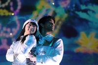 11月21日ユニバーサルスタジオジャパン1 - ドックの写真掲示板 Doc's photo