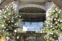 日本橋のクリスマス - London tea