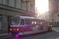 A moment in Prague #9 - S w a m p y D o g - my laidback life