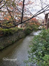 京都南座へ… ~吉例顔見世興行と高麗屋(松本家)三代同時襲名披露 - 趣味とお出かけの日記