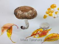 子供たちのために描いた、キノコと落ち葉の絵 - miwa-watercolor-garden