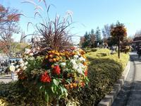 あいち花フェスタ in デンパーク - 緑区周辺そぞろ歩き