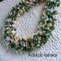 Kolokolo kahakai - パンの木ぷらす~備忘録