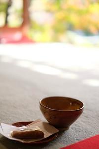 茶道を知らない私がお抹茶をいただいた件 - ひねもすのたりの時かいな
