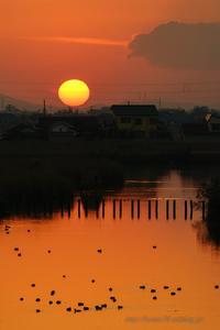 福島潟の夕日 - デジタルで見ていた風景