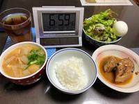 11/27本日の晩酌の肴は鳥モモとピーマンの炒め物 - やさぐれ日記