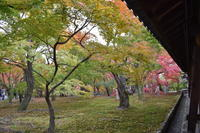 第11回Osaka Opthalmology Forumその3 (1110) - 小さな眼科クリニック@城北公園(竹内眼科医院)