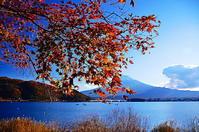 河口湖畔秋の印象Ⅱ - 風の香に誘われて 風景のふぉと缶