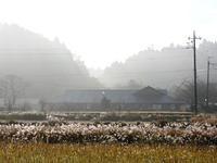 朝の風景 - 千葉県いすみ環境と文化のさとセンター