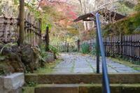 王禅寺紅葉 - エンジェルの画日記・音楽の散歩道