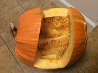ジャックオーランタンかぼちゃ - お転婆シニアのガーデニング、旅、ロードバイク、たまの料理