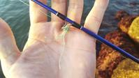 今日のショアジギ…明石の釣り@ブログ - 明石の釣り@ブログ