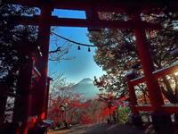 黄昏時富士の高嶺に紅い鳥居 - 風の香に誘われて 風景のふぉと缶
